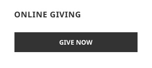Online Giving Widget